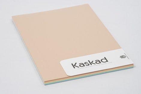 """Másolópapír Kaskad A/4 5x20ív pasztell """"P31"""" (31,16,72,61,54)"""