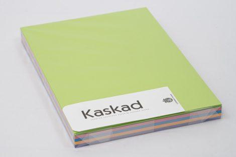 Másolópapír Kaskad A/4 160gr Inetnsiv MIX K66(66,59,22,78,86) 125ív/csg