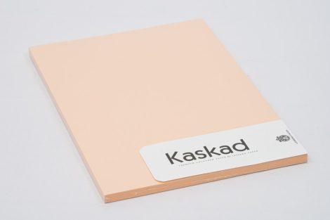 """Másolópapír Kaskad A/4 160gr """"31"""" lazac 50ív/csg"""