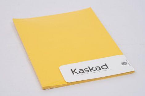"Másolópapír Kaskad A/4 160gr ""56"" repce sárga 50ív/csg"