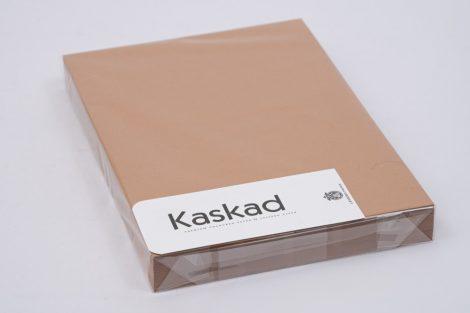 "Karton Kaskad A/4 225gr ""19"" dió 100ív/csg"