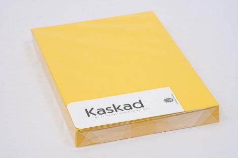 "Karton Kaskad A/4 225gr ""56"" repcesárga 100ív/csg"